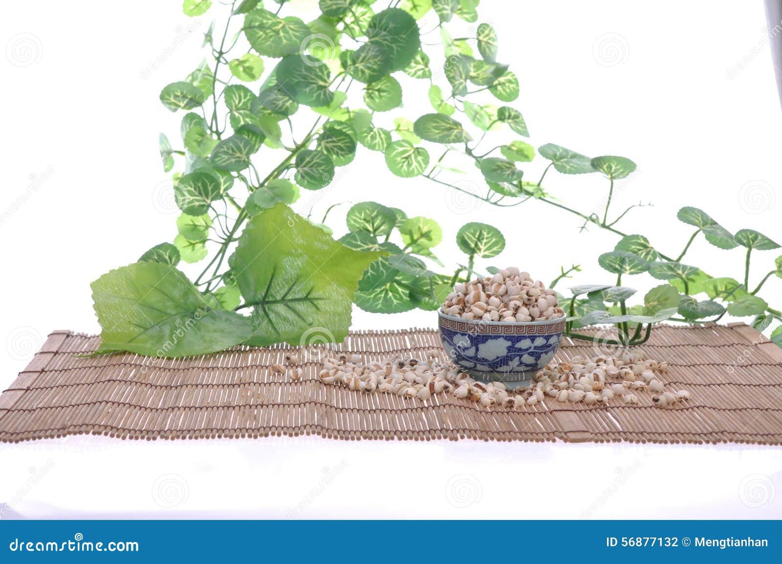 Coix-seme--una medicina di cinese tradizionale