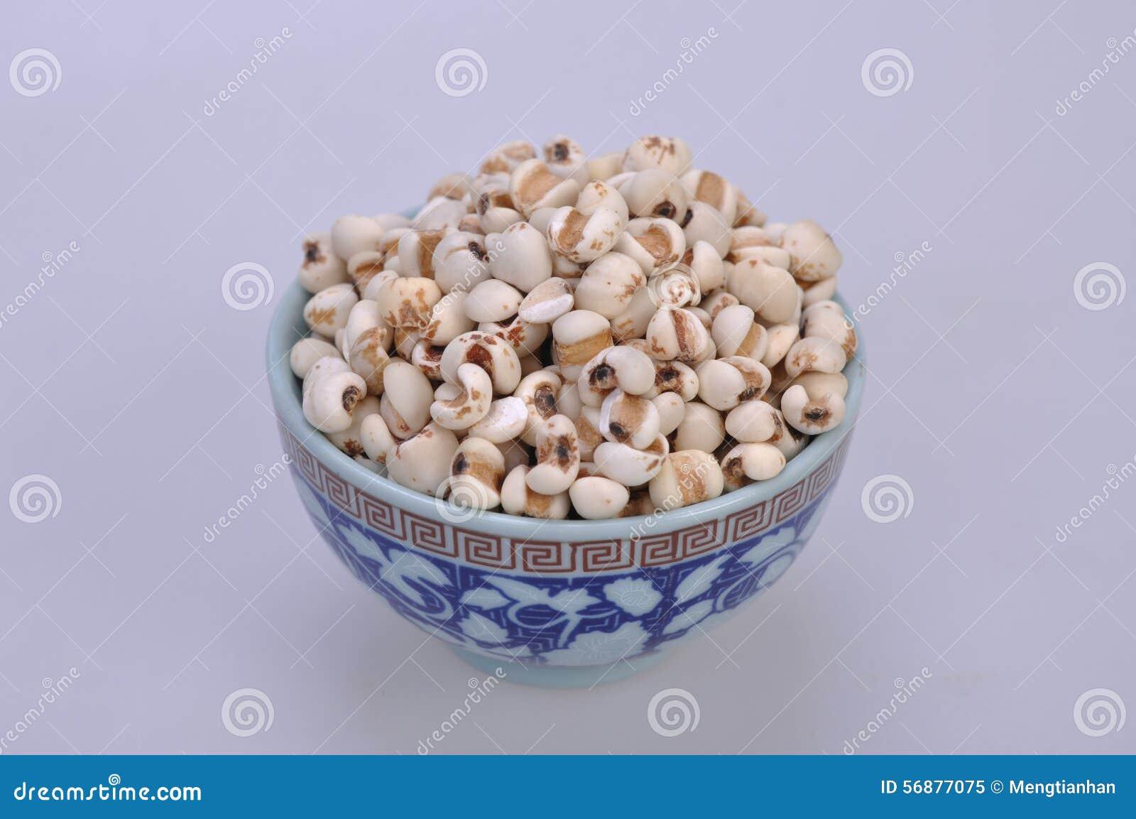 Coix-semi in una ciotola--una medicina di cinese tradizionale