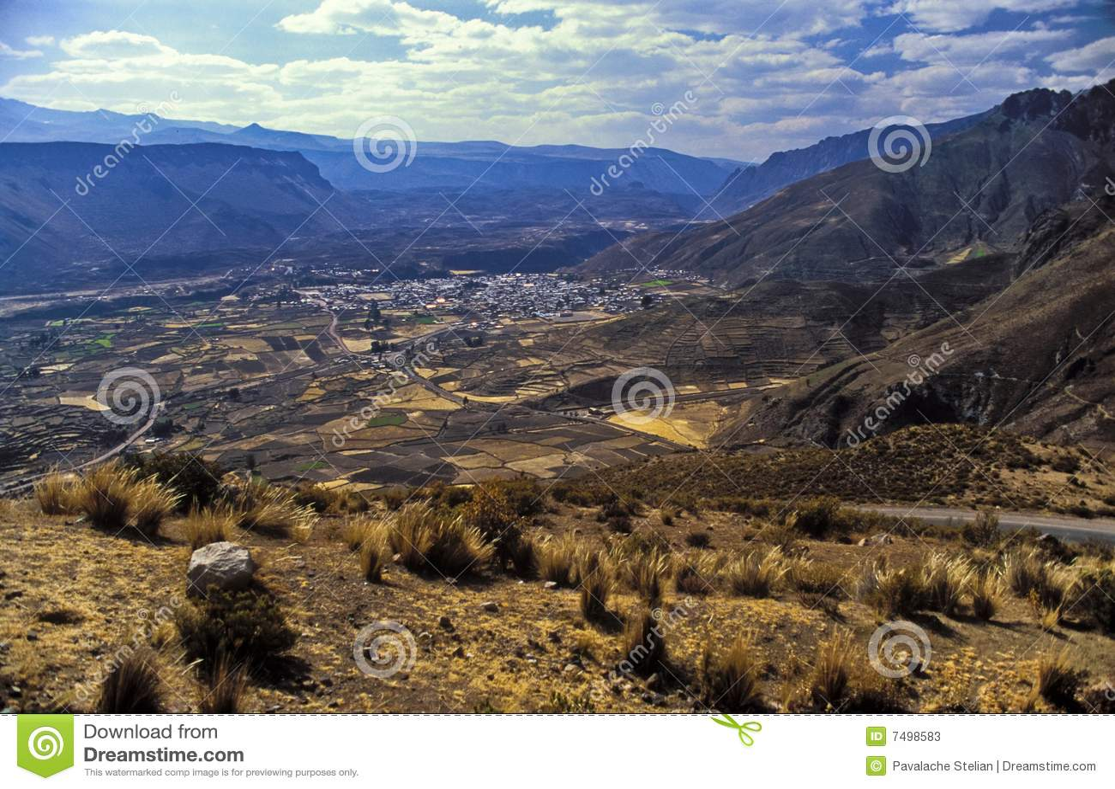 Colca Valey - terrazzo del Inca - Condors si dirige #2