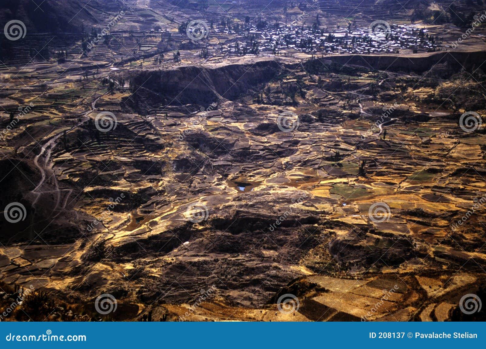 Colca Valey - terrazzo del Inca - Condors si dirige #3