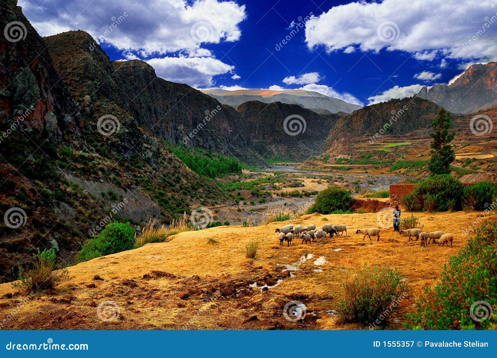 Download Colca Valley Landscape, Peru Stock Image - Image of inca, colorful: 1555357