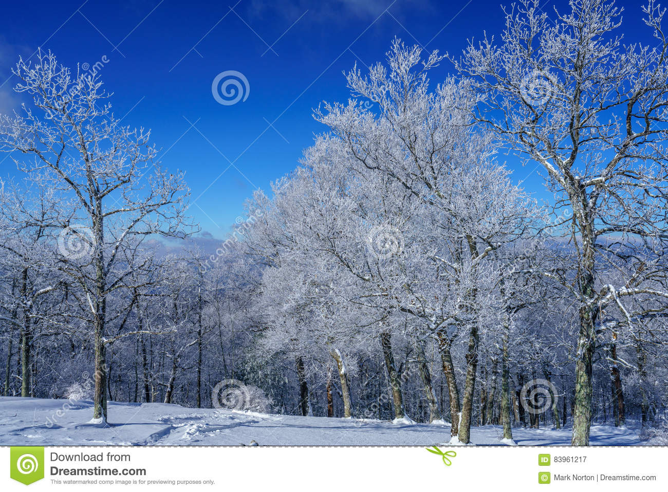 A Cold Crisp Winter Day Stock Image Image Of Beautiful