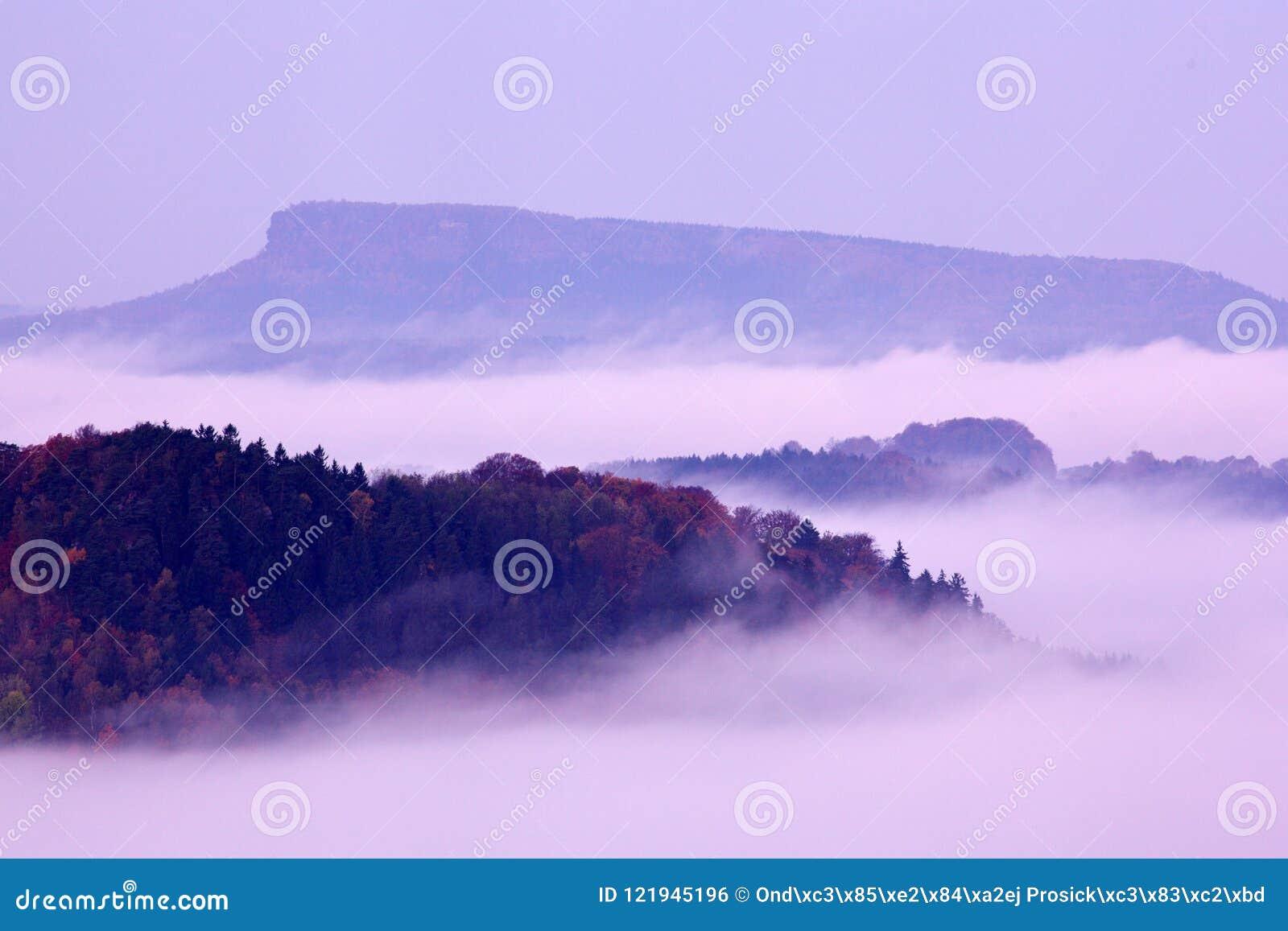Cold misty foggy morning with twilight sunrise in a fall valley of Bohemian Switzerland park. National park Ceske Svycarsko, beaut