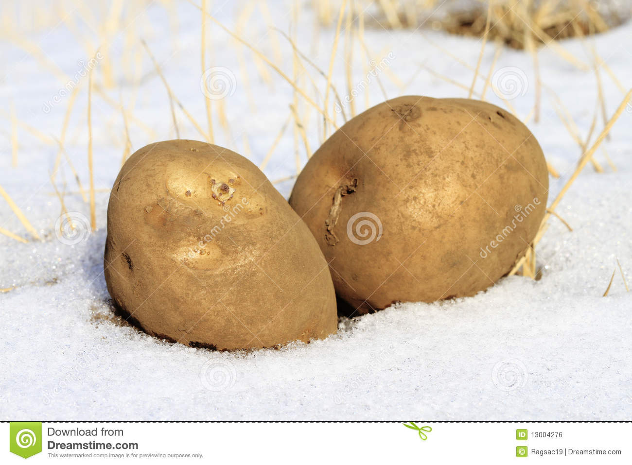 Cold Potato Royalty Free Stock Image - Image: 13004276