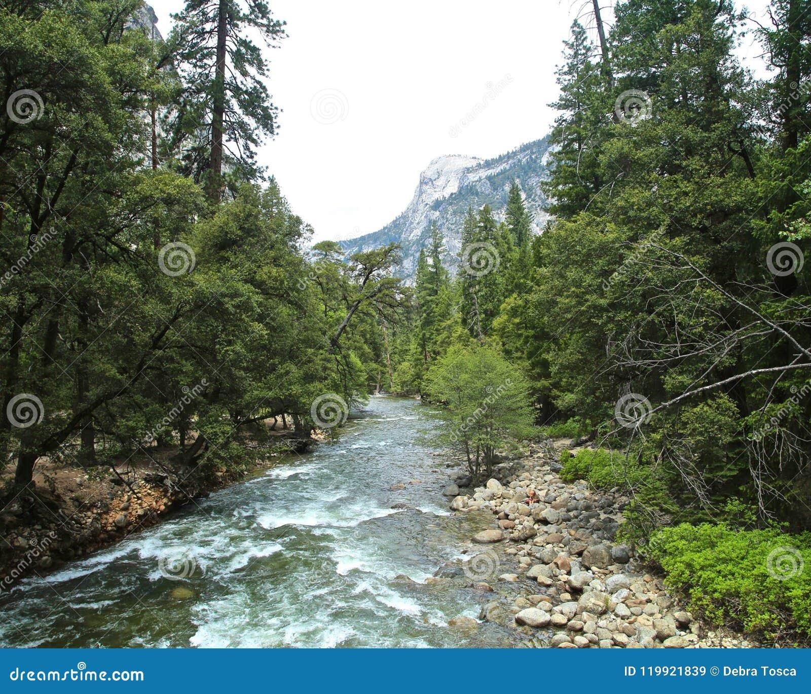 Yosemite National Park Rivers: Yosemite National Park River Stock Image