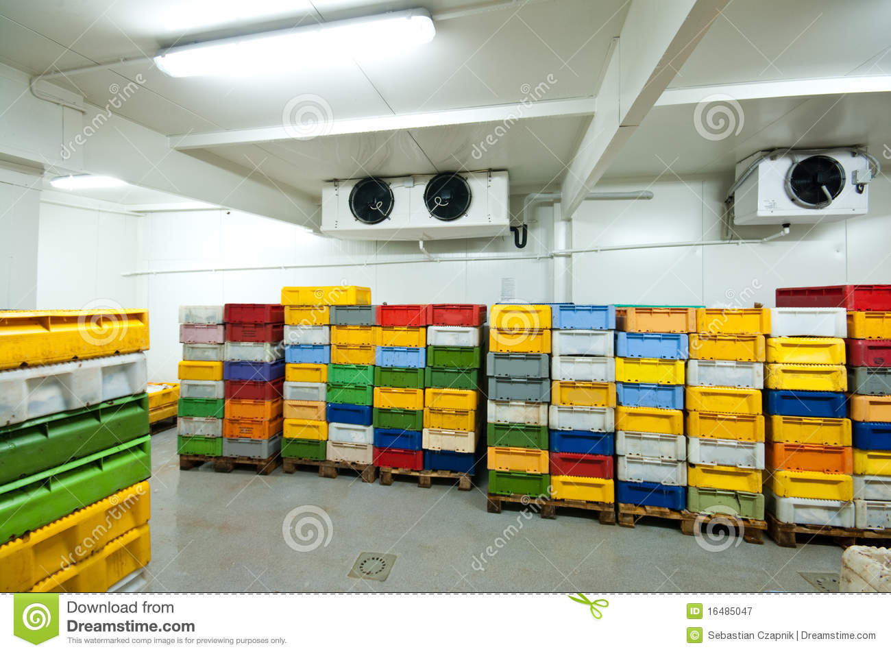 Cold storage stock image. Image of food, fish, cool ...