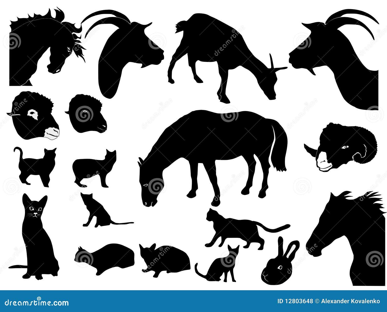 Coleção de animais domésticos