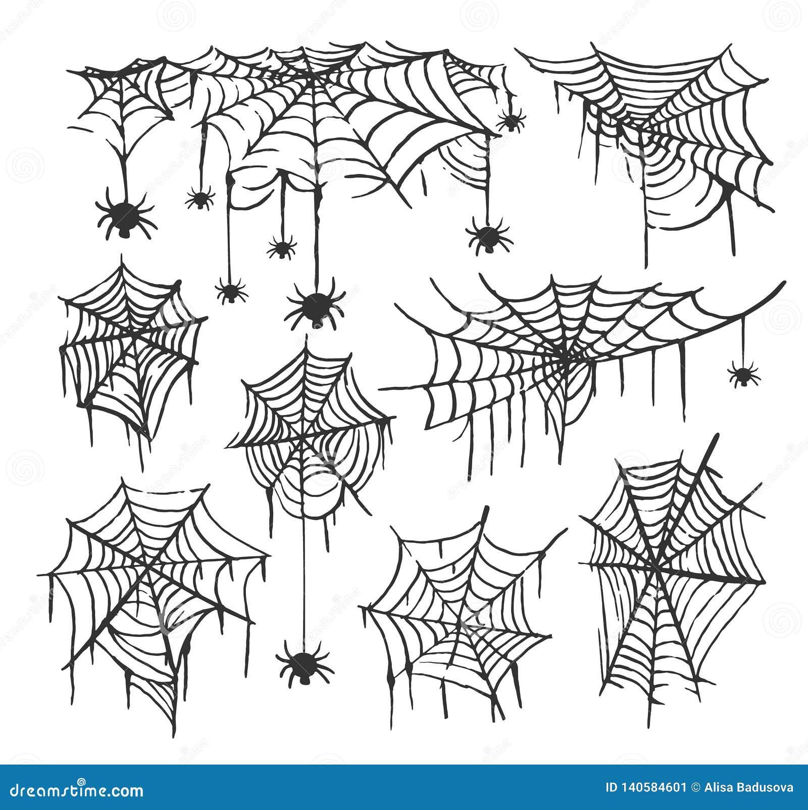 Coleção do fundo transparente isolado teia de aranha Spiderweb para o projeto de Dia das Bruxas Elementos da Web de aranha assust