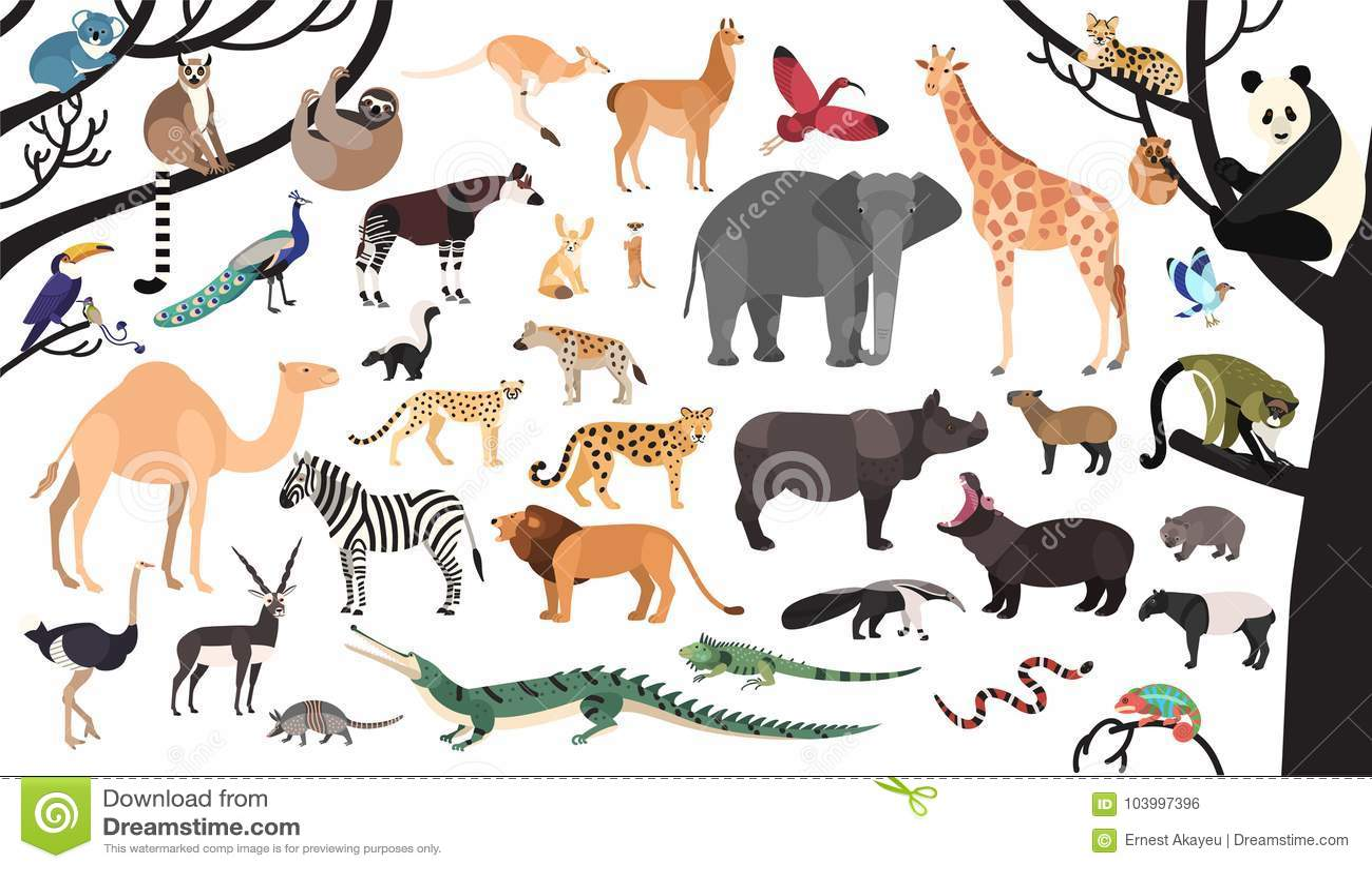 Colección De Animales Exóticos Y De Pájaros Que Viven En Sabana Y