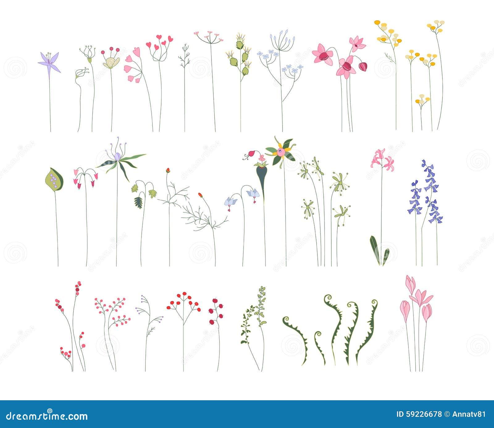 Colección de diversas flores estilizadas