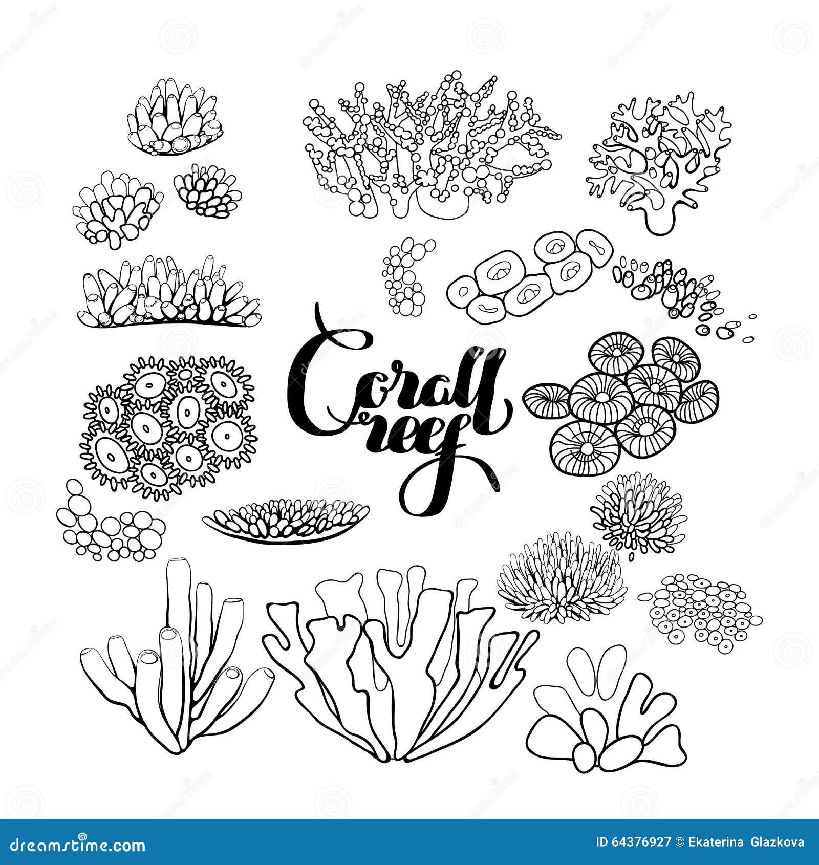Colección De Elementos Del Arrecife De Coral Ilustración del Vector ...