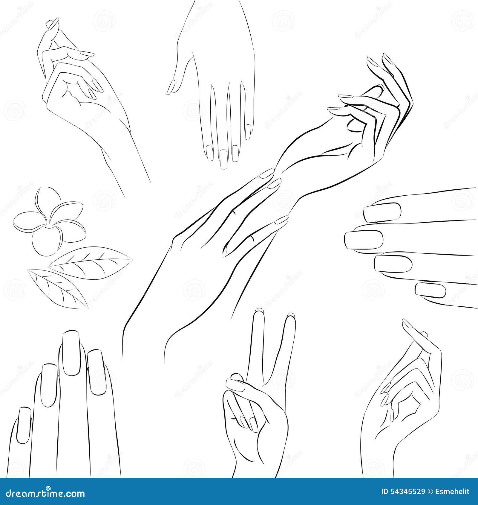 Colección de manos en diversos gestos, manicura