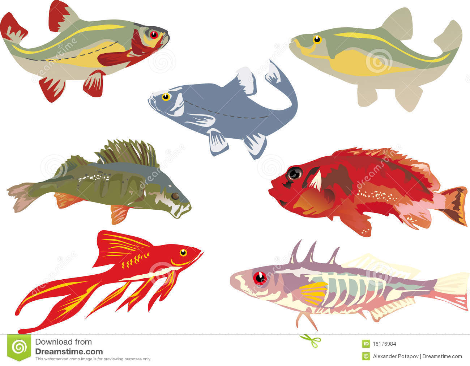 Colección De Siete Pescados Del Color Ilustración del Vector ...