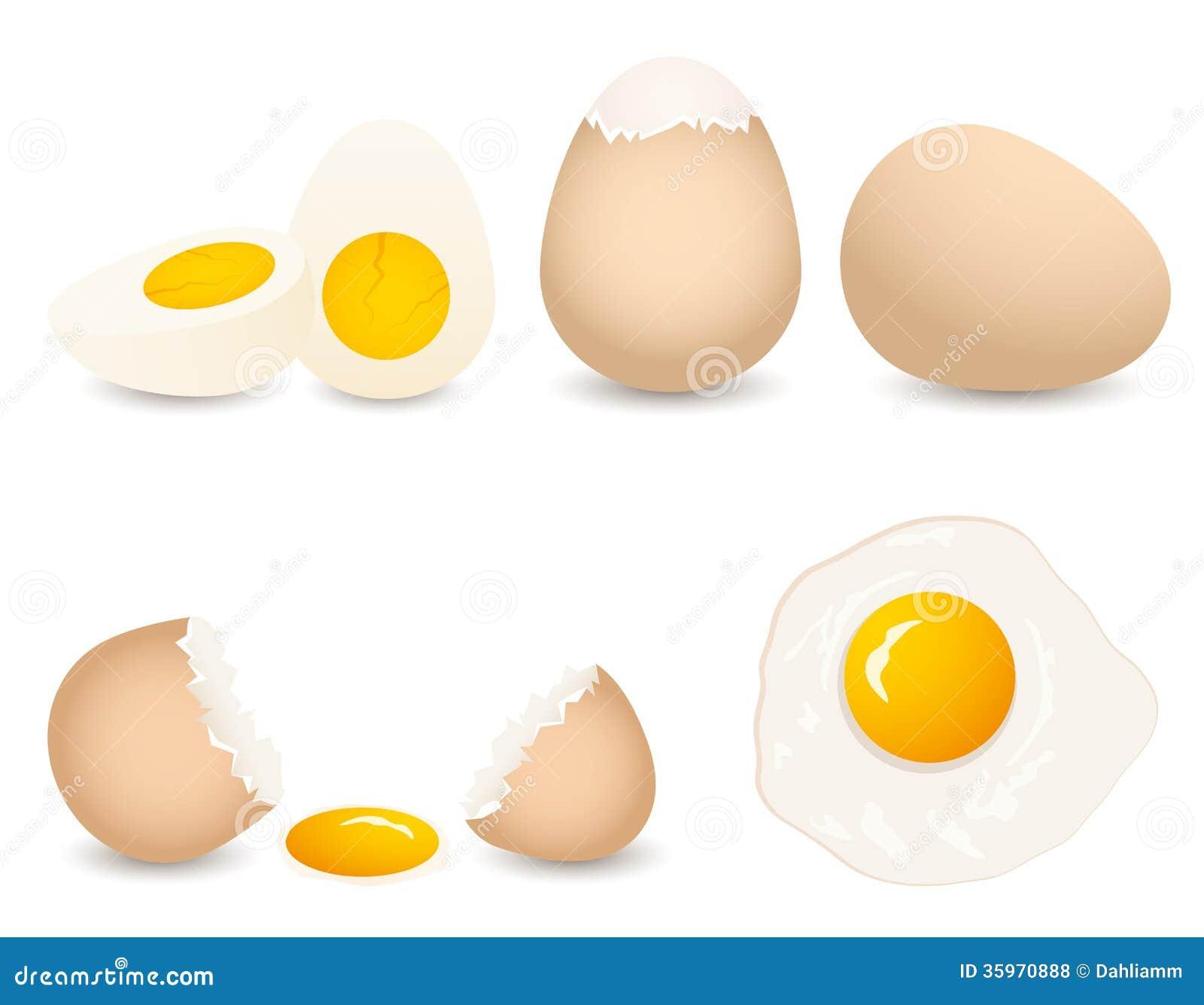 Colección del huevo del vector