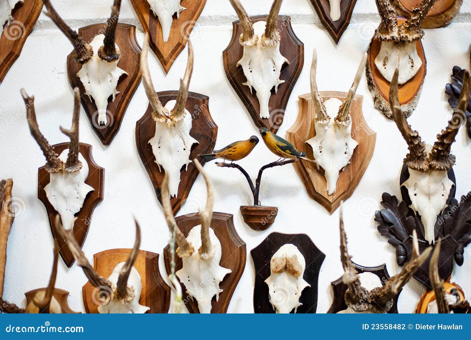 Colección principal del trofeo de los ciervos