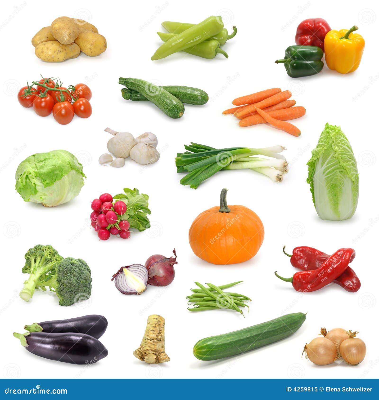 Colección vegetal