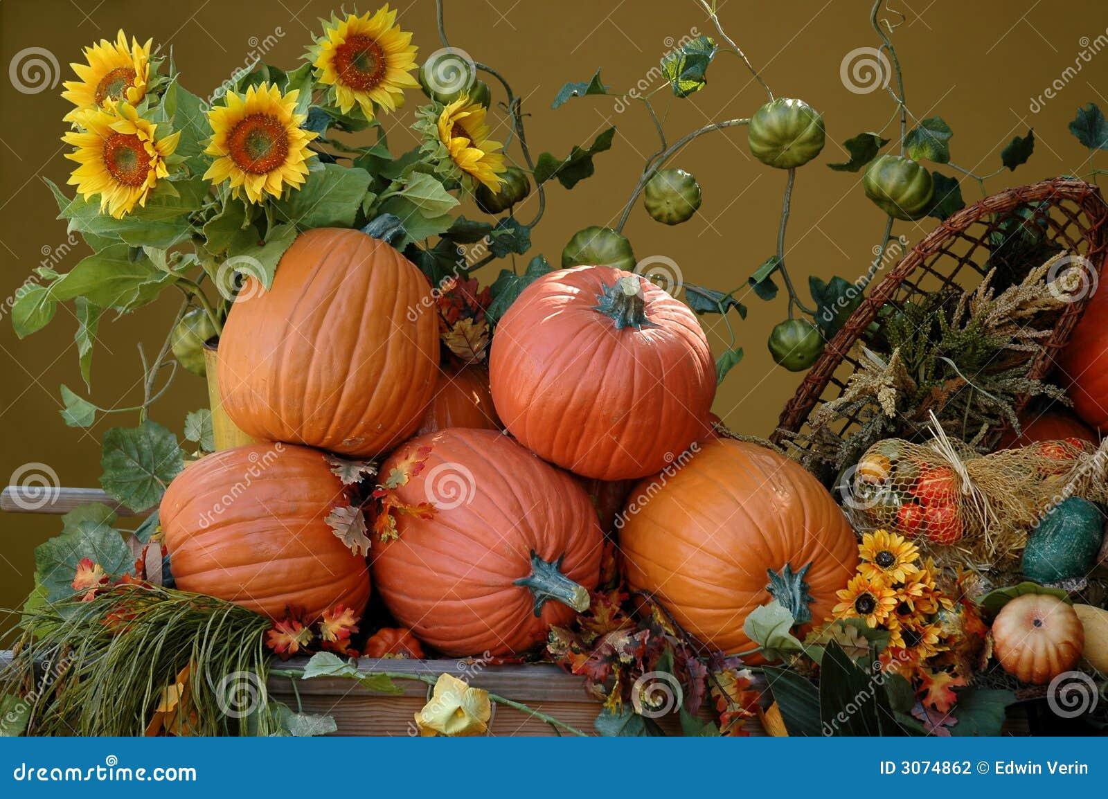 Colheita do outono