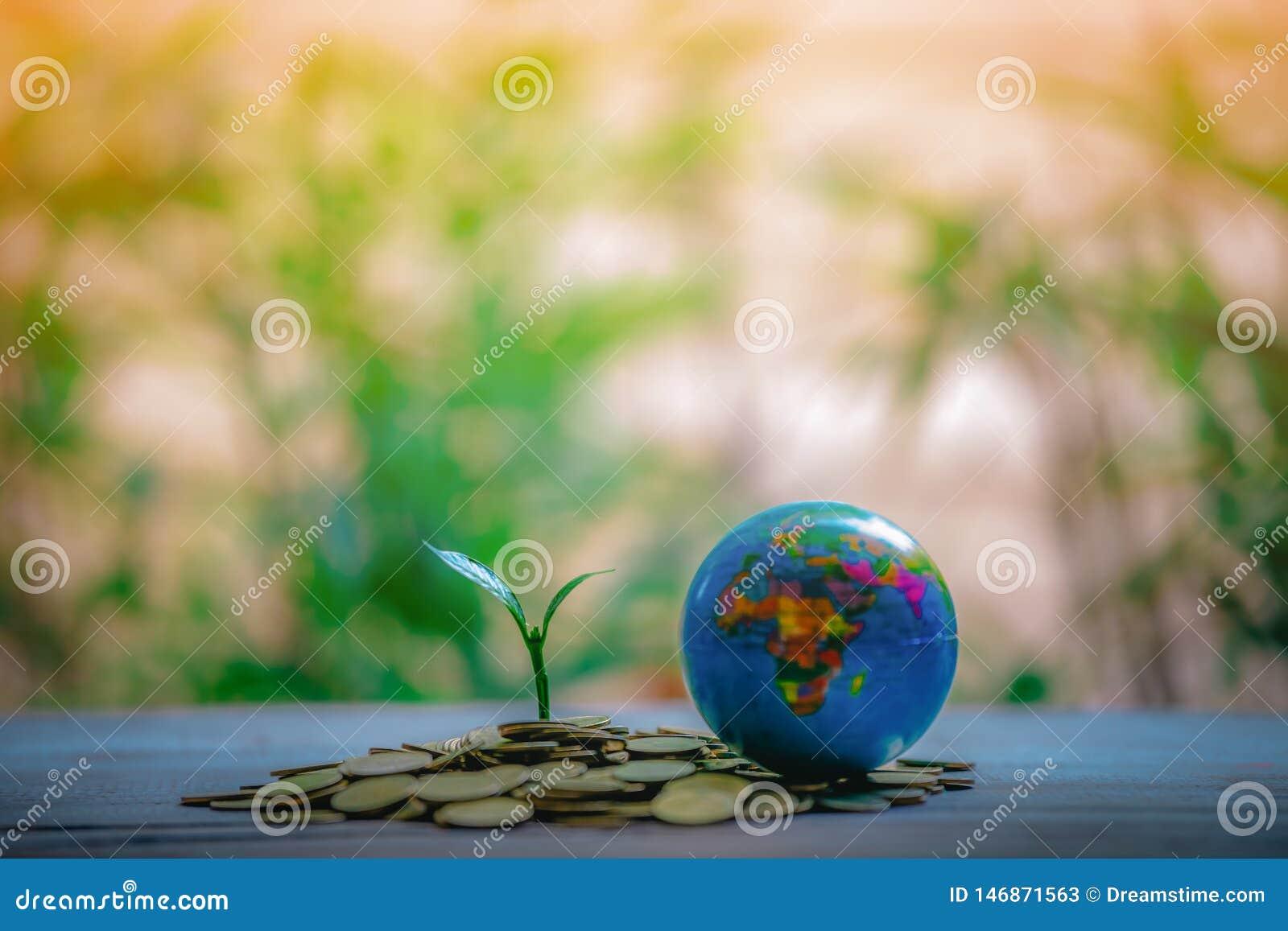 Colheita em moedas - ideias do investimento para o crescimento