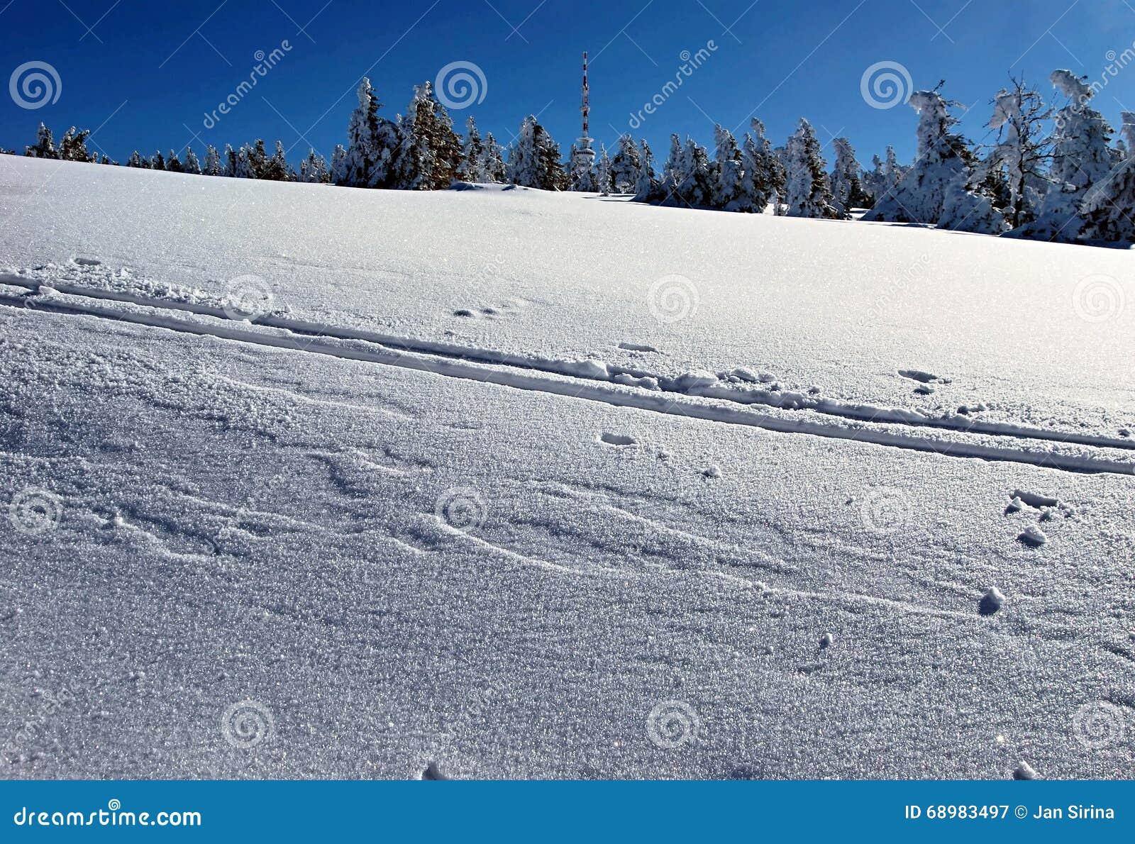 Colina de Praded en las montañas de Jeseniky del invierno
