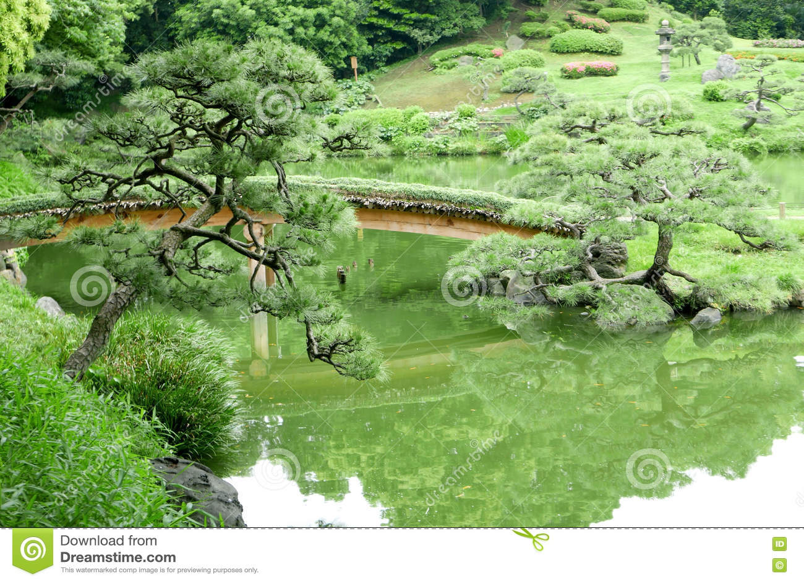 colina verde puente lago en jardn japons del zen foto de archivo