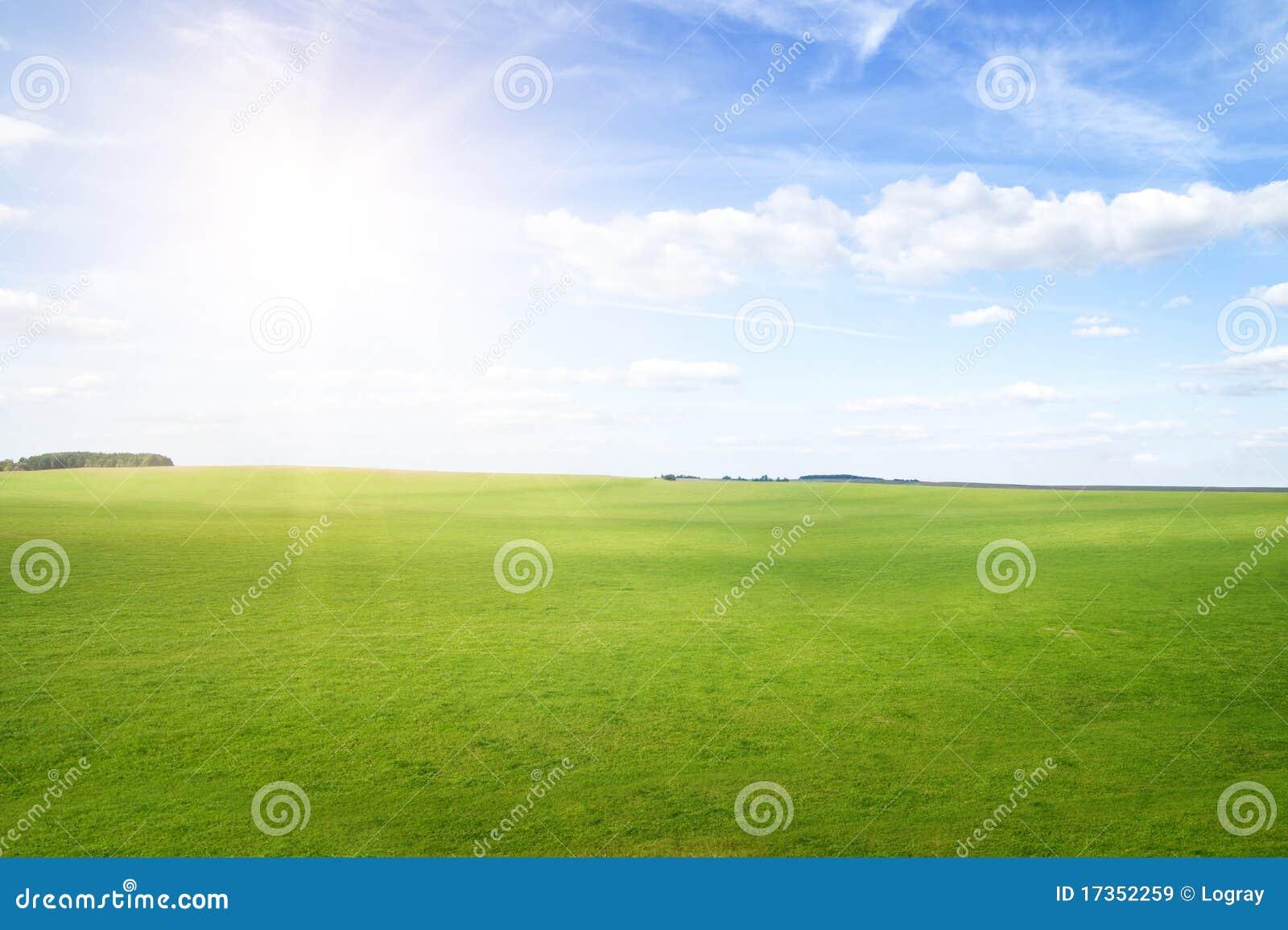 Colinas de la hierba verde bajo el sol del mediodía en cielo azul.