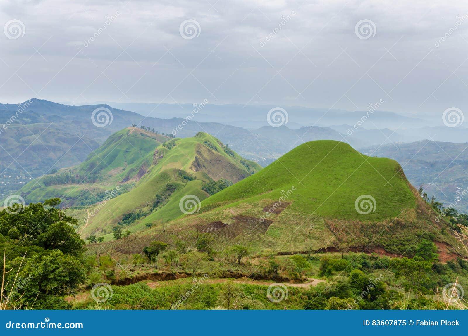 Colinas fértiles rodantes con los campos y cosechas en Ring Road del Camerún, África