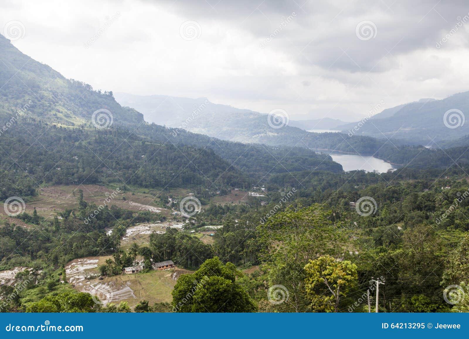 Colinas verdes y montañas en el país de la colina alrededor de Nuwara Eliya en Sri Lanka central