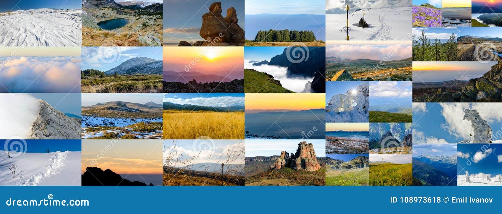 Collage av naturfoto, olika säsonger