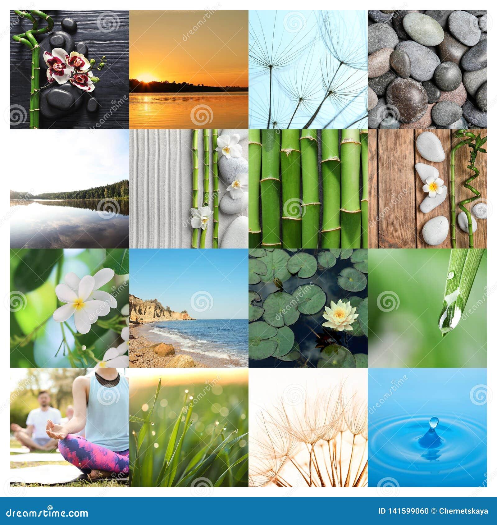 Collage av olika härliga bilder