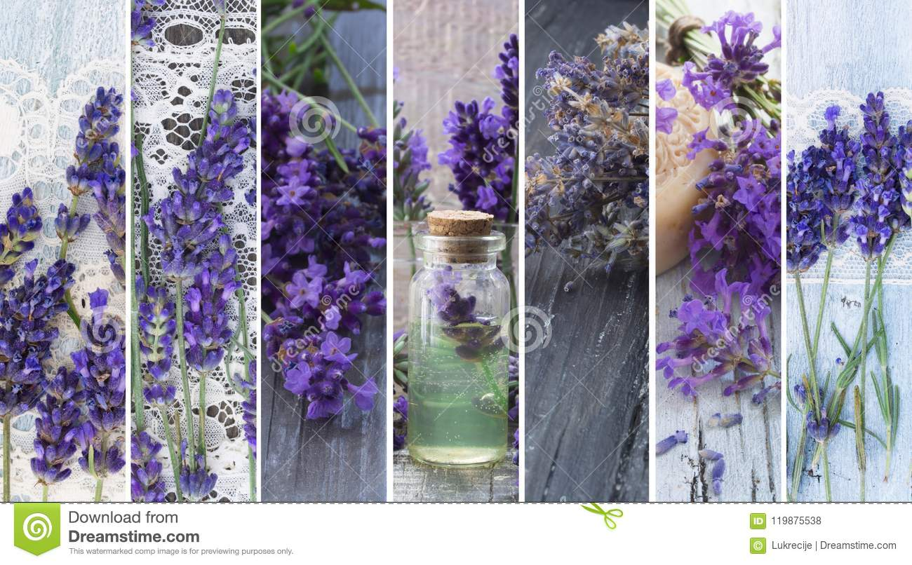 Natural, fresh cosmetics with lavender flowers