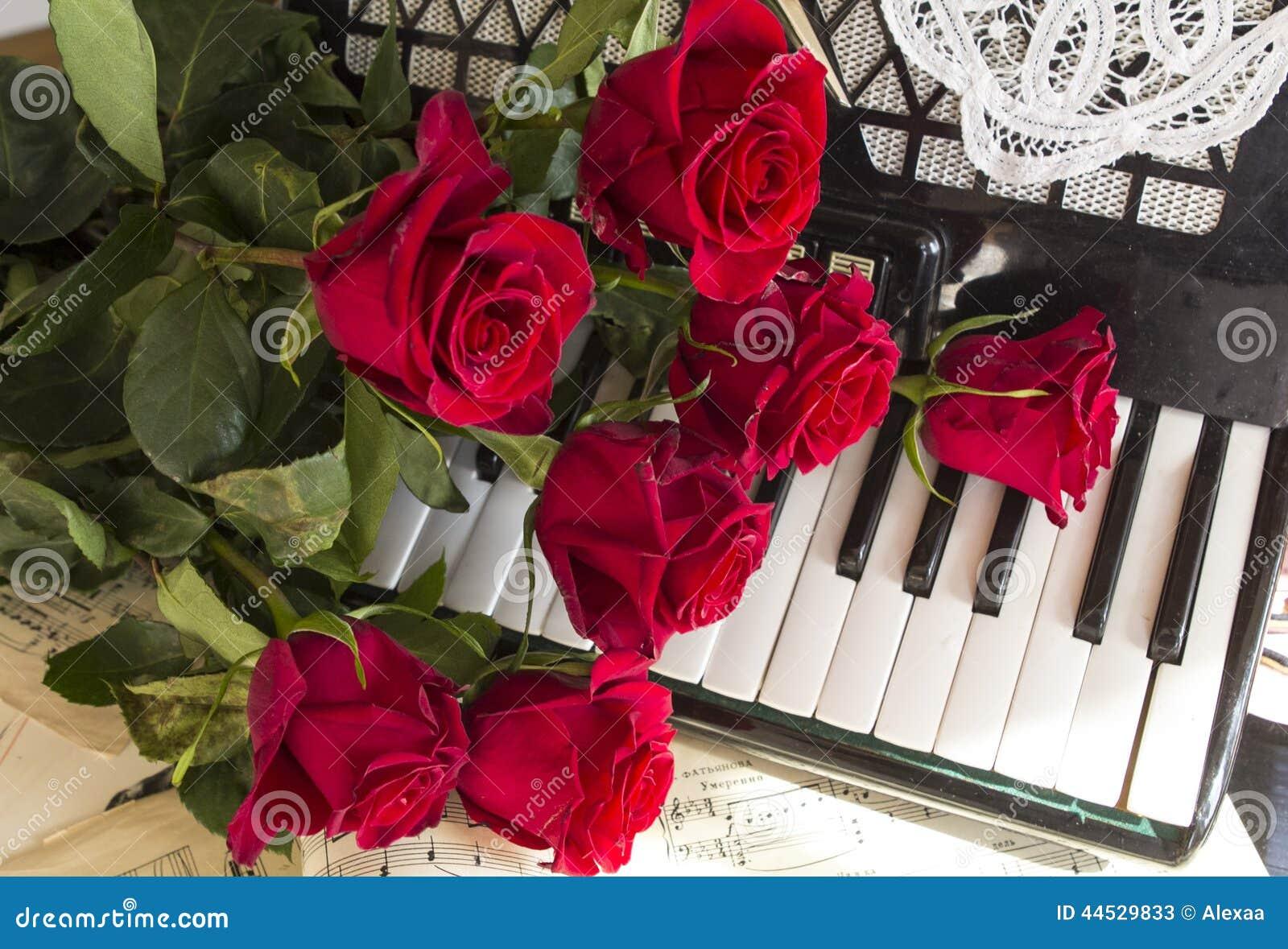 Collage con el acordeón y las rosas rojas