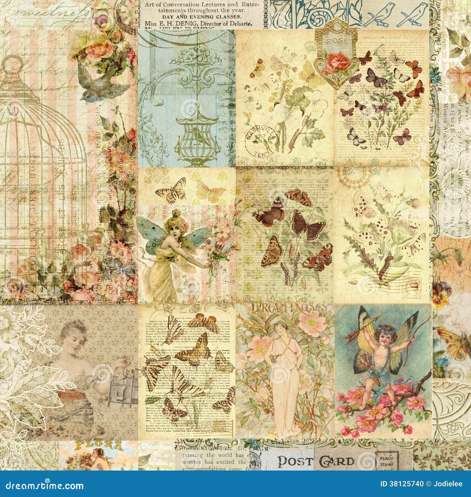 Collage d annata delle stampe della farfalla e floreali