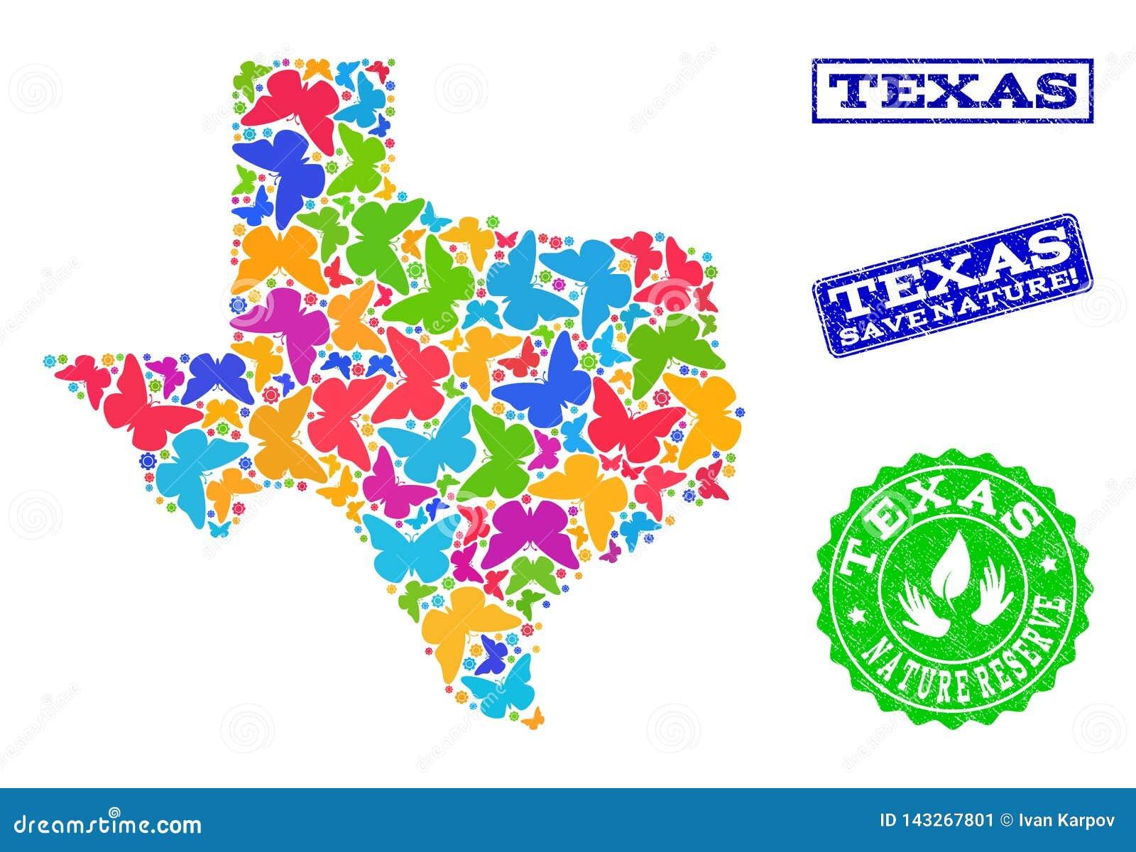 Collage de ahorro de la naturaleza del mapa de Texas State con las mariposas y los sellos texturizados