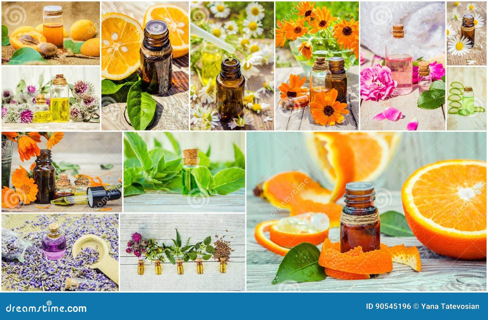 Collage de hierbas y del aceite esencial