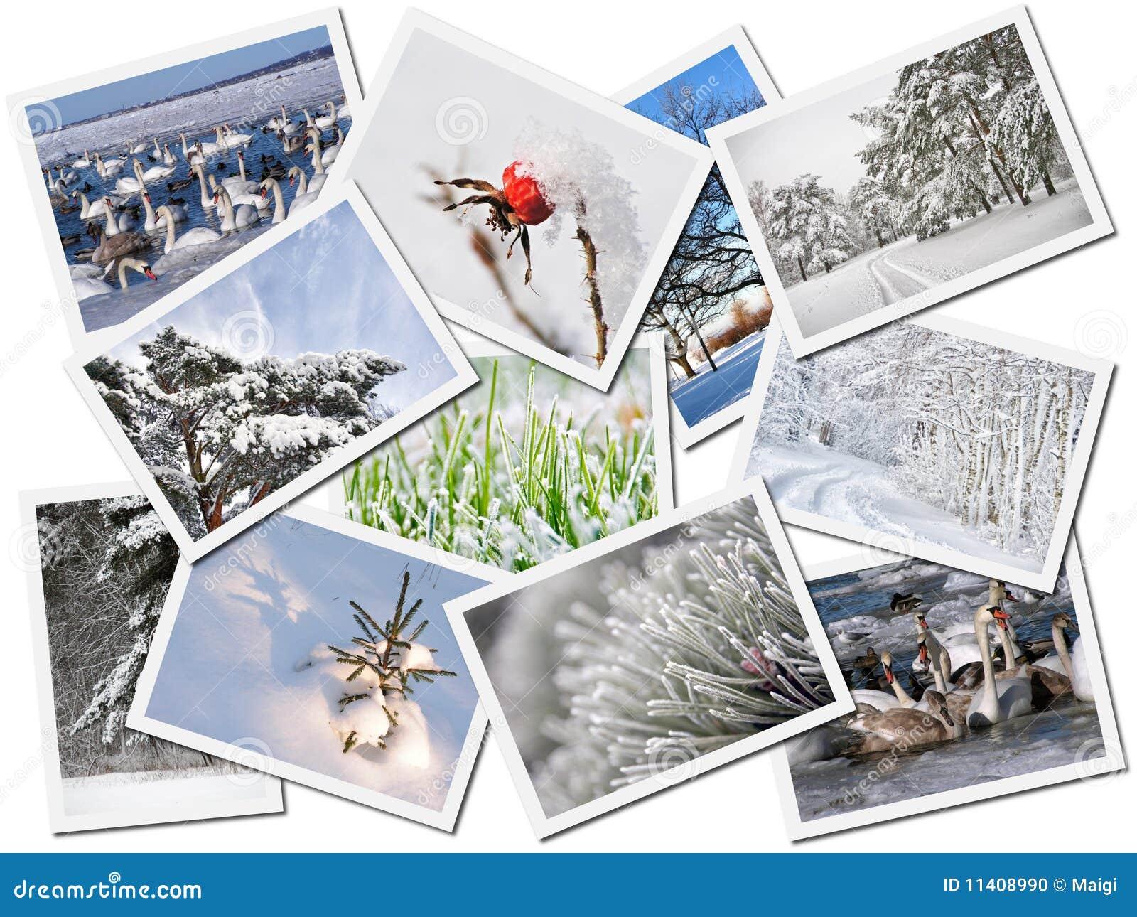 Collage de los cuadros del invierno foto de archivo for Collage de cuadros