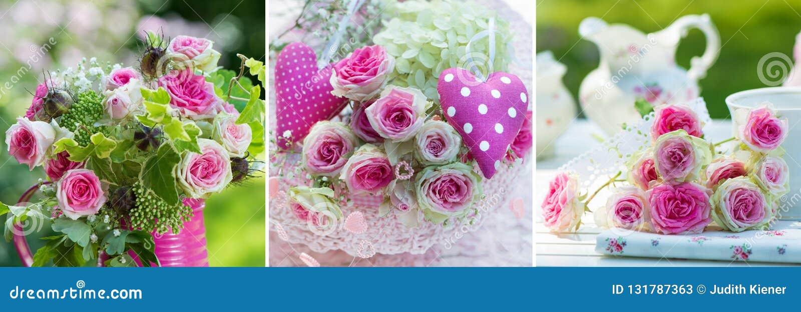 Collage de trois images des roses roses