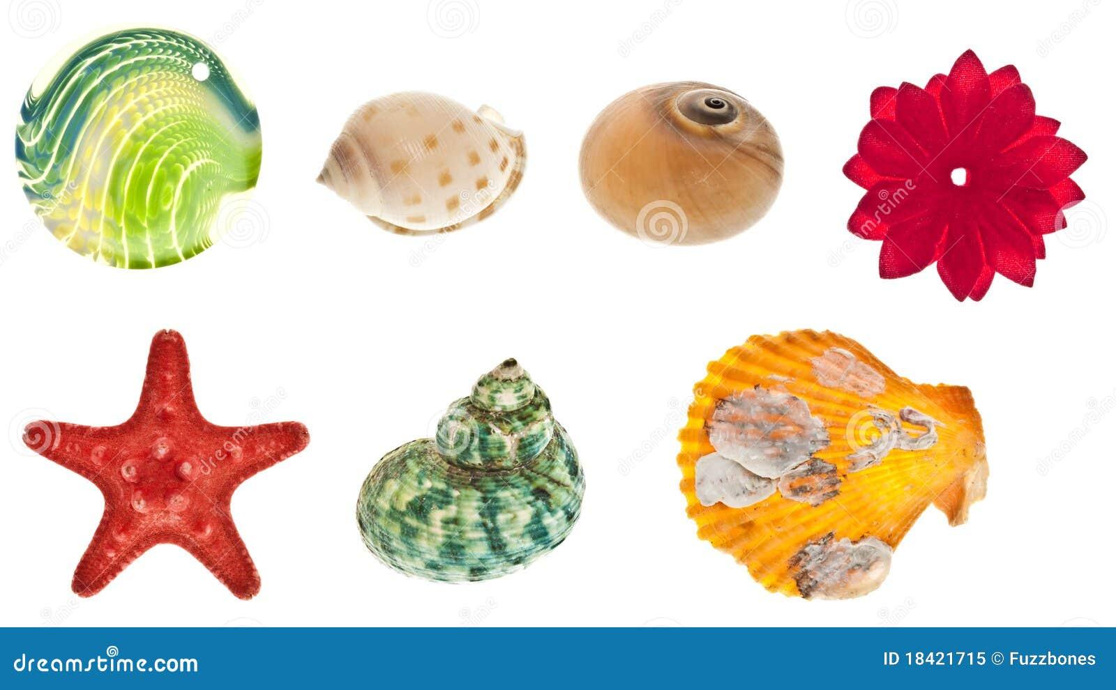 Collage degli oggetti del mare