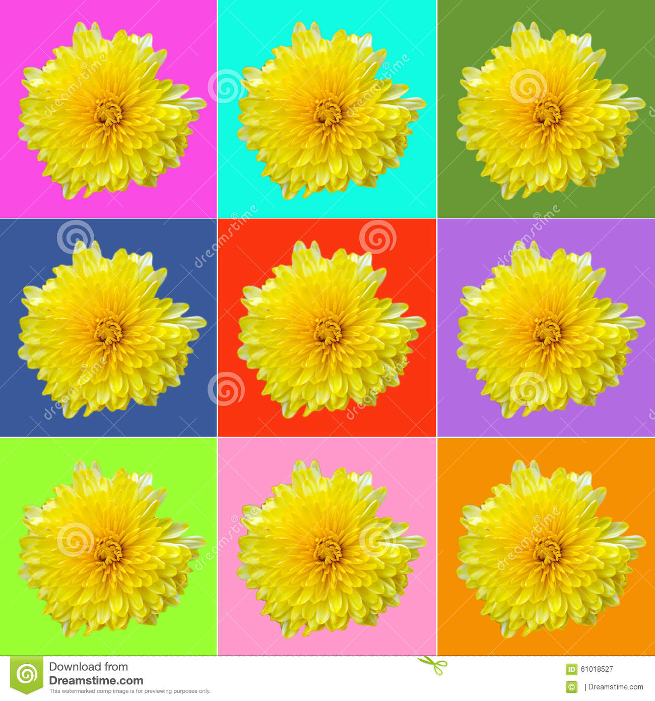 Collage mit gelber Chrysantheme
