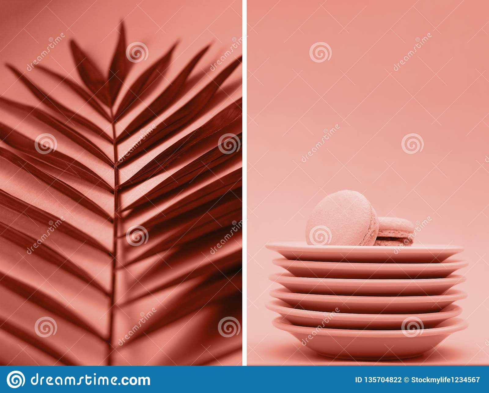 A collage of photos of coral color with palm branches and macaroons