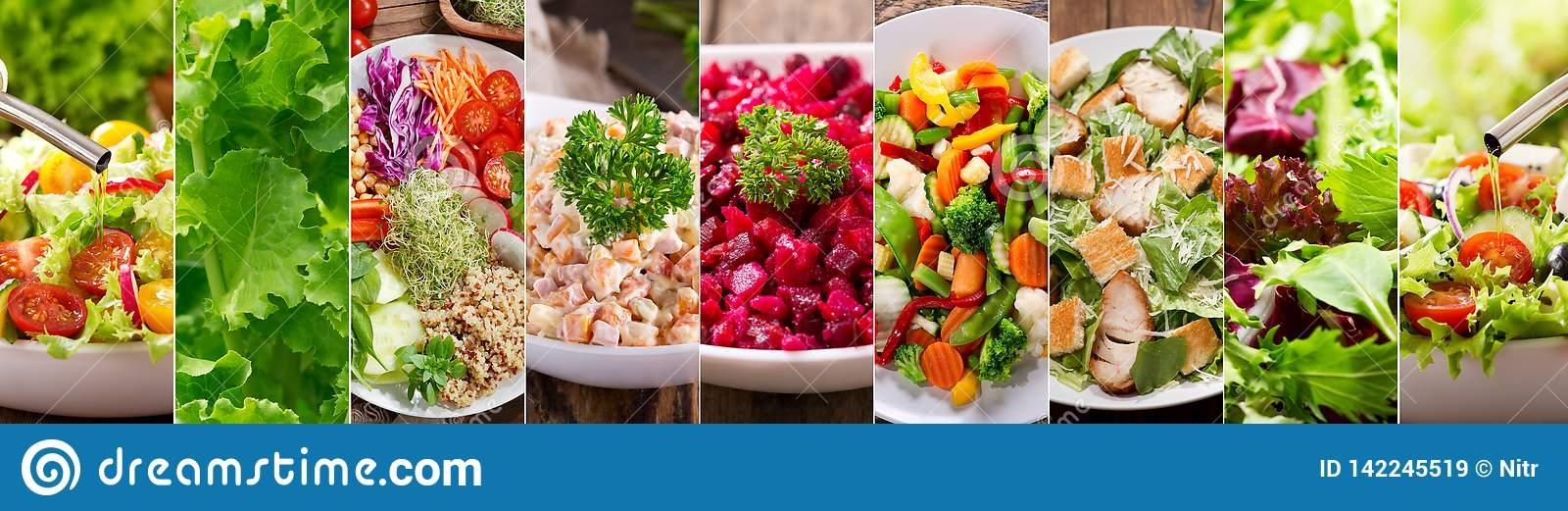 Collage of various types plates of salad
