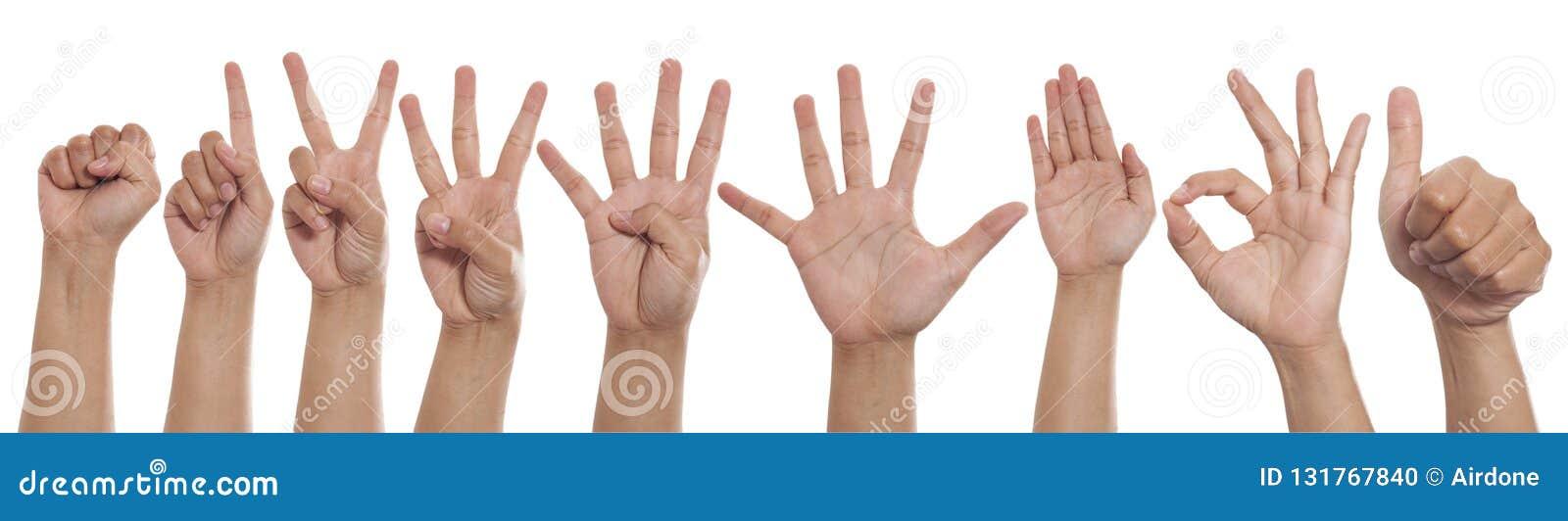 Collage von den Händen, die verschiedene Gesten, Zahlhandfinger-Zeichensatz zeigen