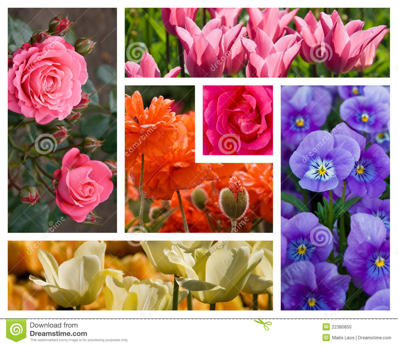 Collageblommor