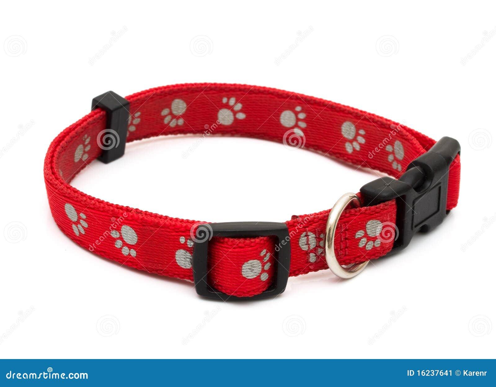 Collar de perro imagen de archivo imagen 16237641 for Como hacer un collar para perro