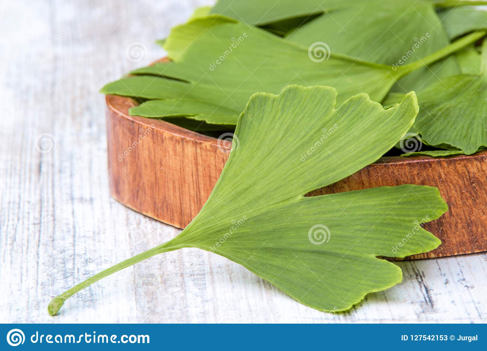 Collected medicinal leaves of the Ginkgo biloba tree in a bowl on the table wooden