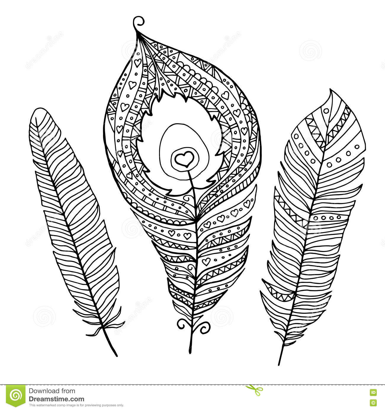 Collection Of Abstract Peacock Feathers For Coloring Book Stock Vector