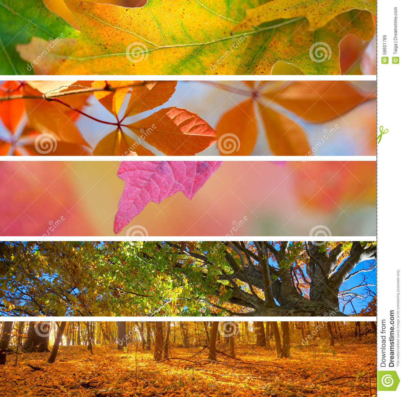 collection of autumn banners fall season abstract background stock