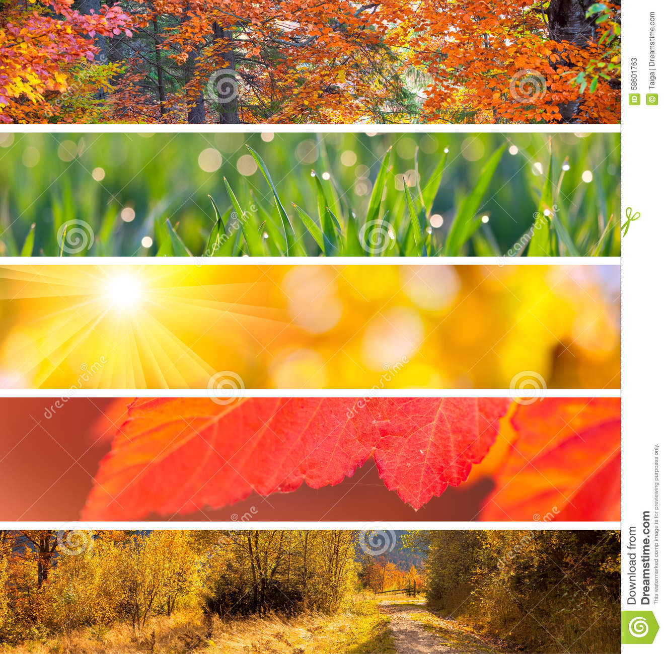 Collection Of Autumn Headers Fall Season Abstract