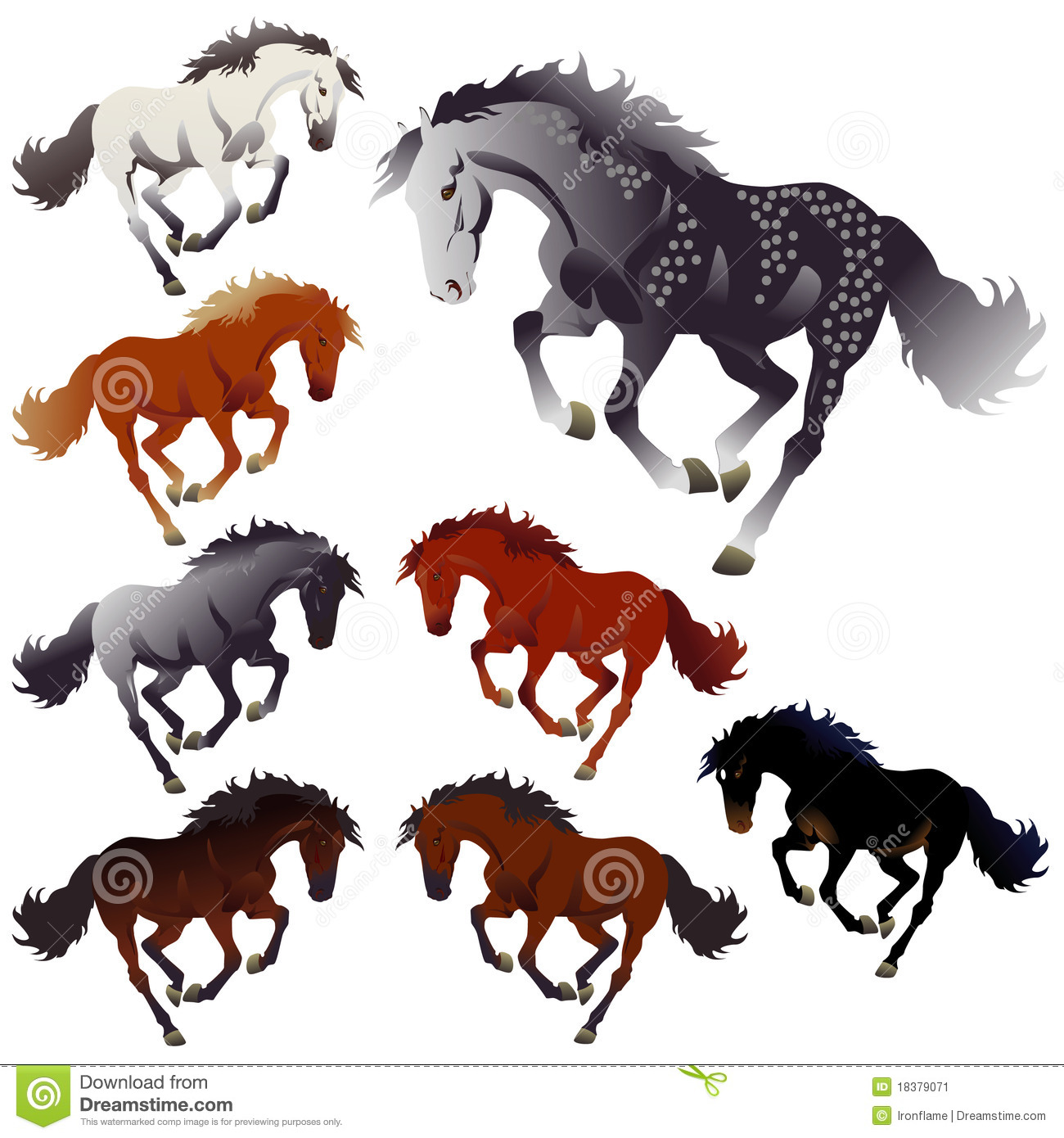collection colors of horses stock vector illustration of crazy