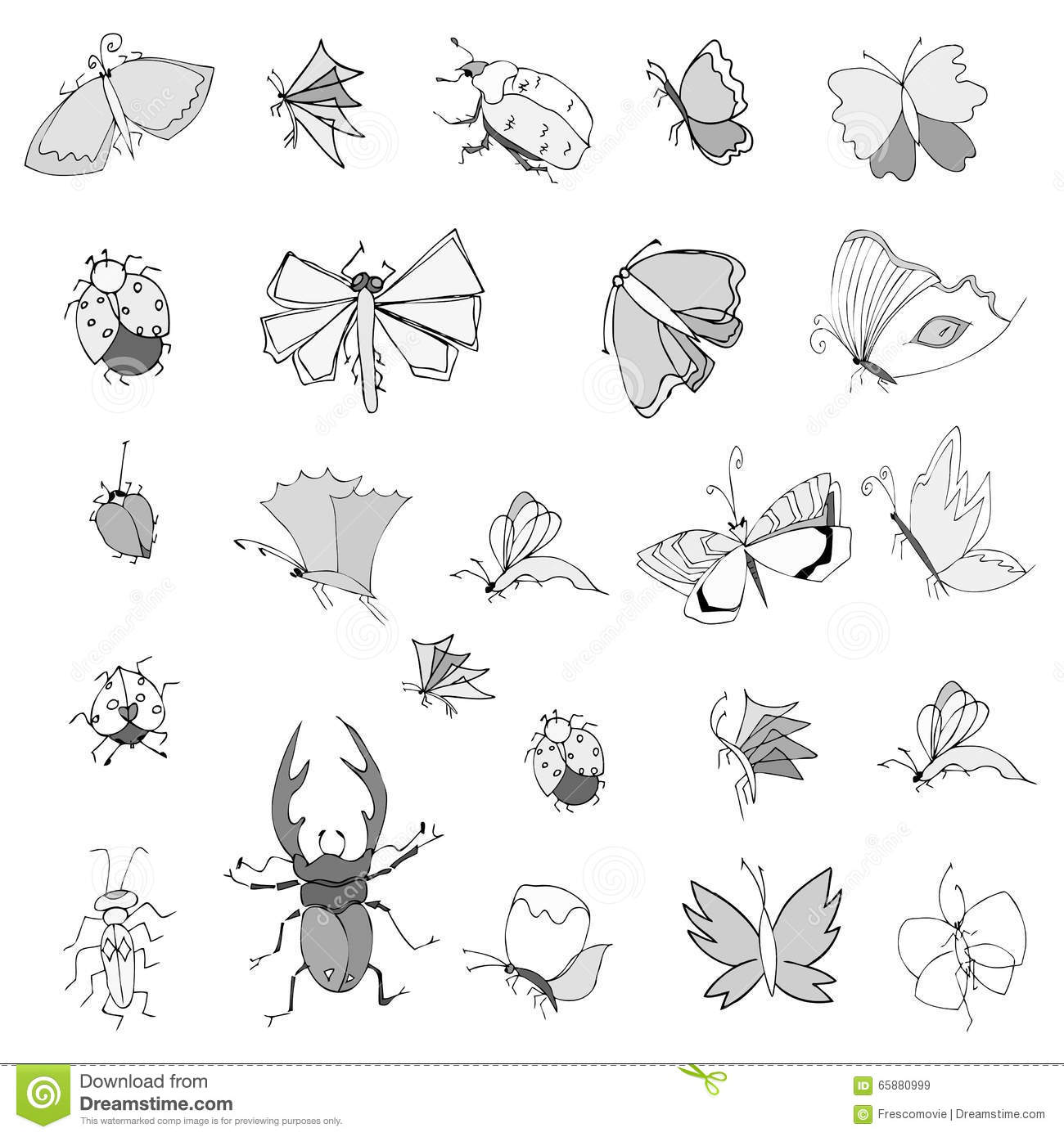 Collection d 39 insectes de dessin de main illustration de - Dessin d insecte ...