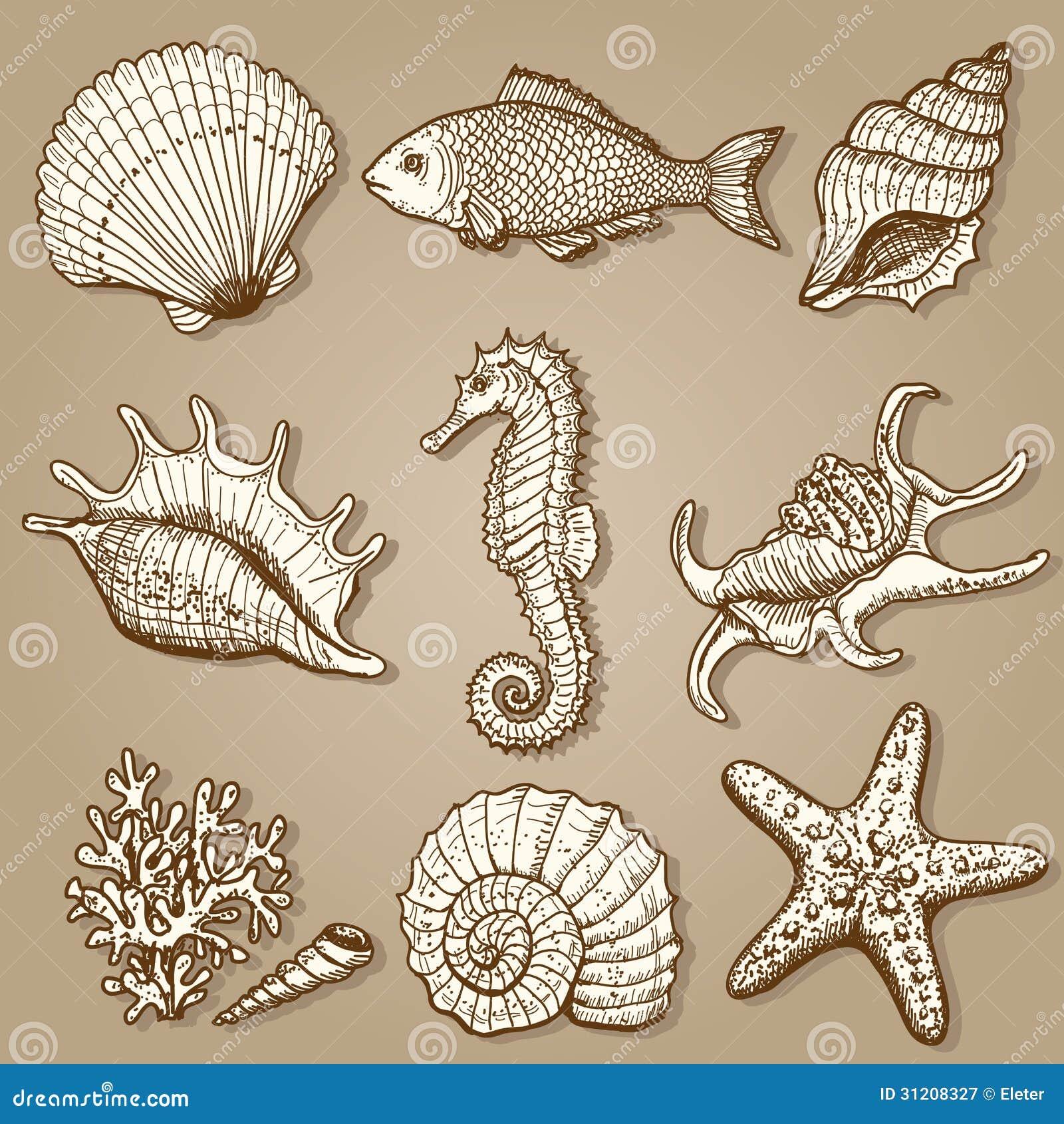 Collection de mer. Illustration tirée par la main originale